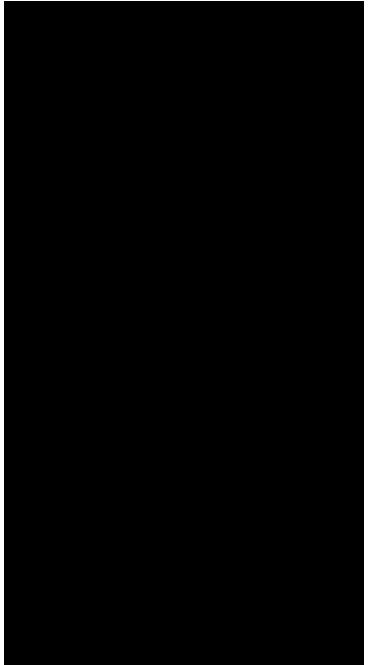 Contorno del escudo